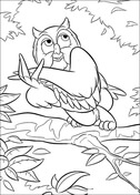 Owl  from Bambi Coloring Page