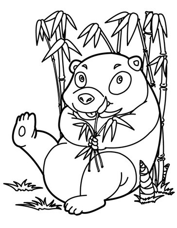 Panda Is Under Bamboo Coloring Page