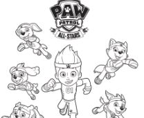 Paw Patrol 16