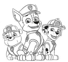 Paw Patrol 30