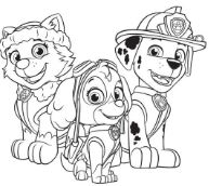 Paw Patrol Characters 2
