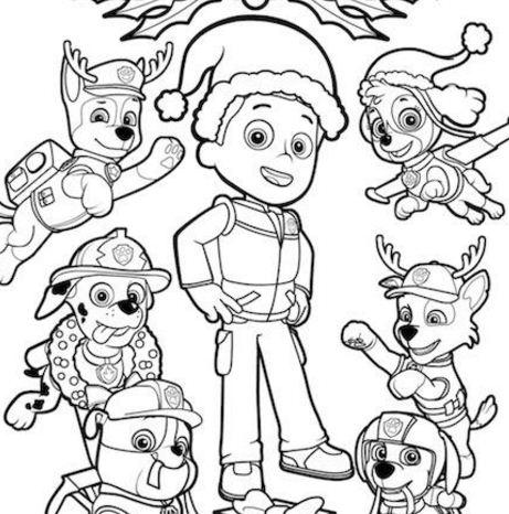 Paw Patrol Christmas Ryder