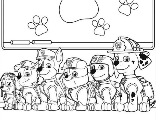 Paw Patrol School Learning Stuff
