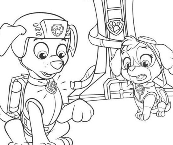 Paw Patrol Skye And Zuma Behind A Tower Coloring Page