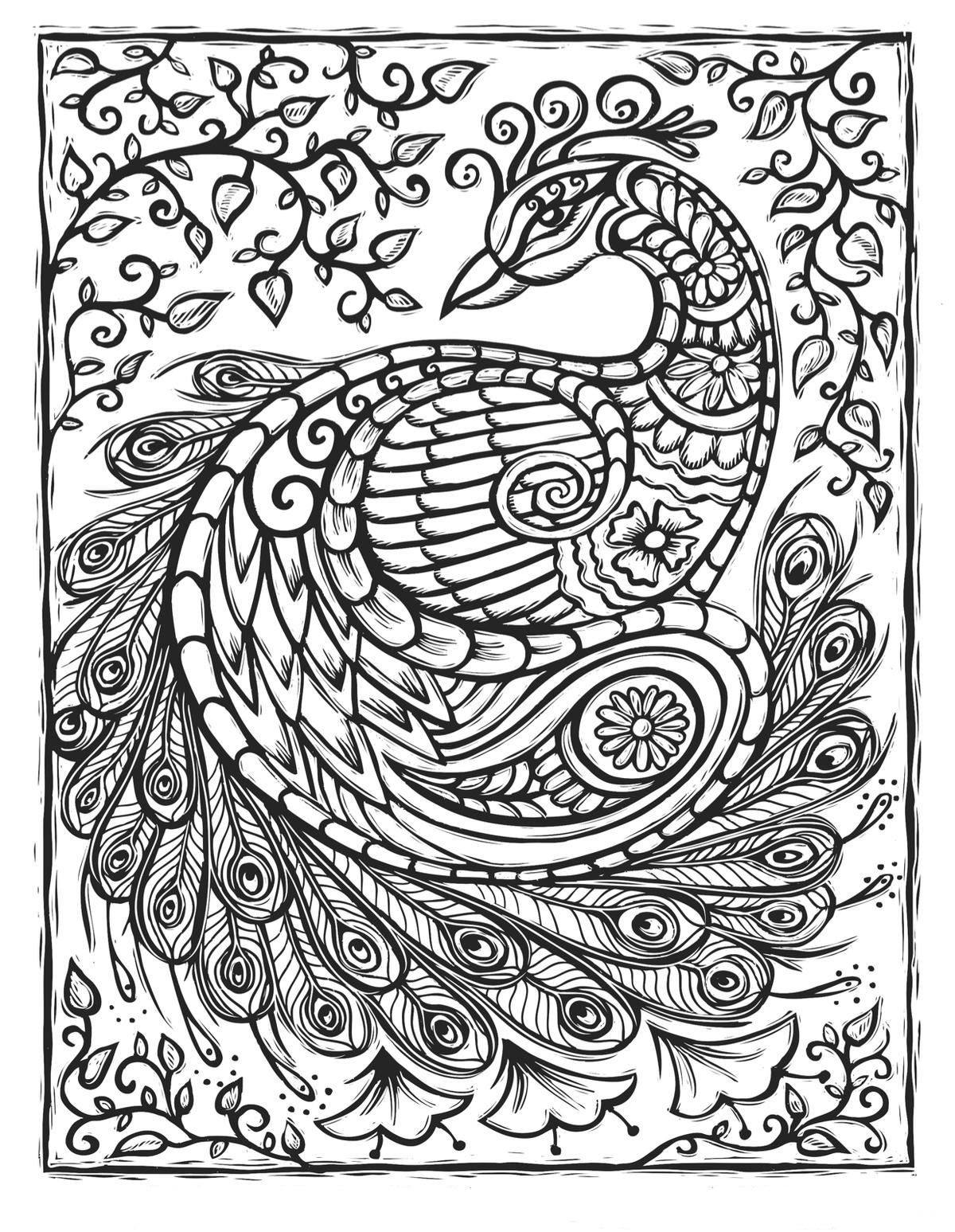 Peacock Patterns Coloring Page