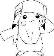 Perfect Pokemon