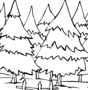 Pine Tree Forest Coloring Page