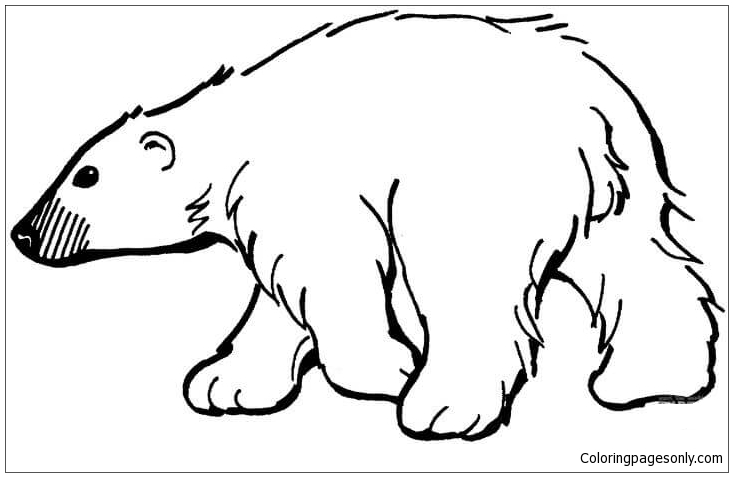 - Polar Bear Coloring Page - Free Coloring Pages Online