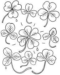 Pretty Shamrocks – St Patricks Day