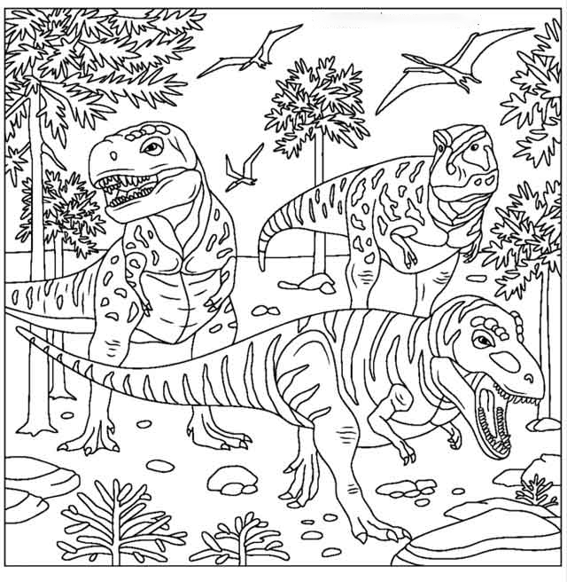 Primery forest Coloring Page