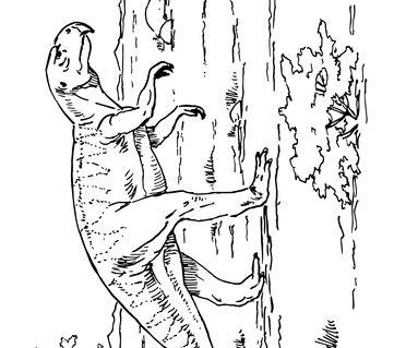 Psittacosaurus Ceratopsian Dinosaur Coloring Page