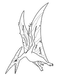 Pteranodon 1 Coloring Page
