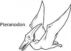 Pteranodon 2 Coloring Page