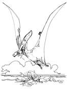 Pteranodon Pterosaur Coloring Page