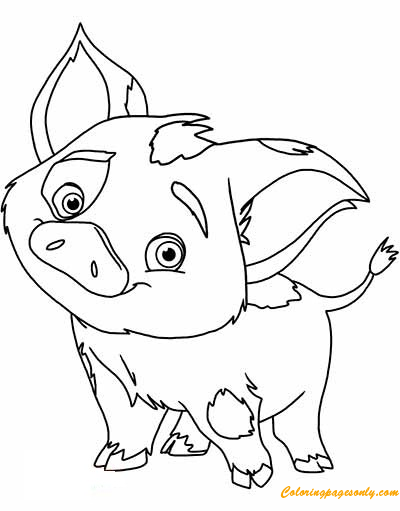 Pua Pig From Moana 1 Coloring Page