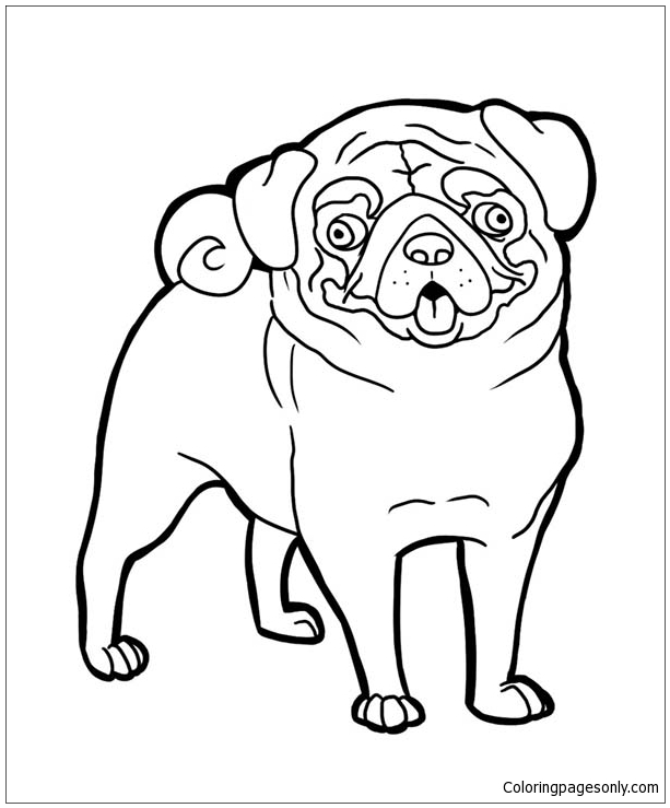 Pug Coloring Pages - Best Coloring Pages For Kids | 739x613