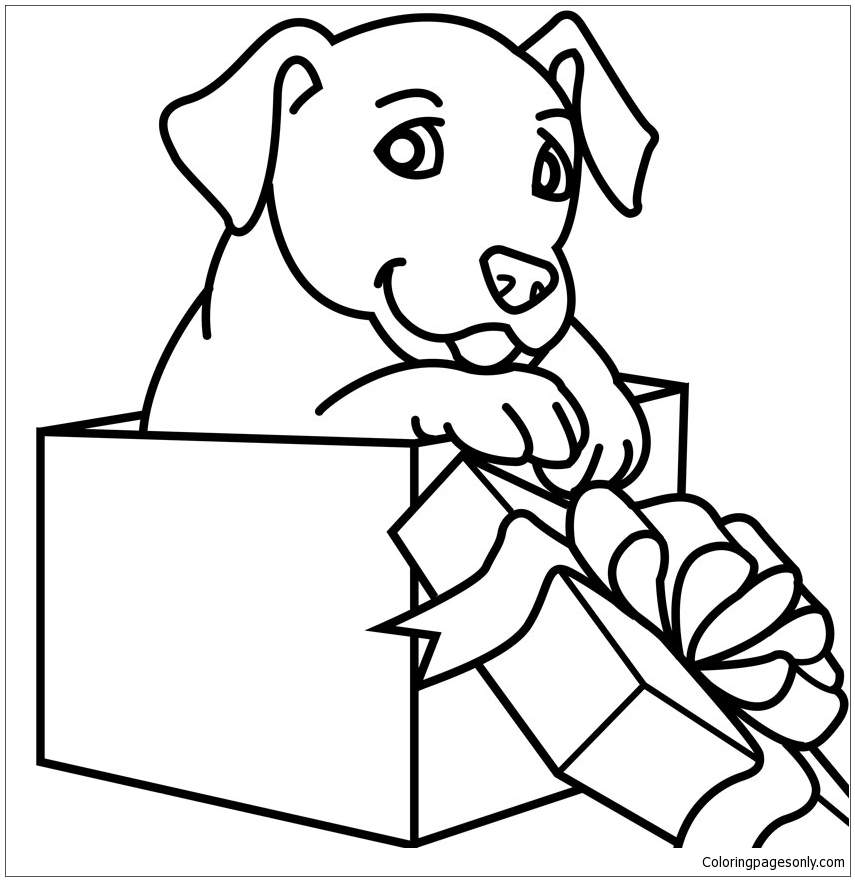 Puppies Puppy Coloring Page