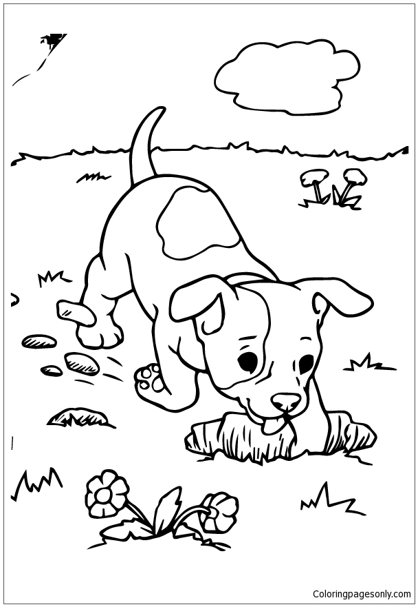 Puppy Digging Coloring Page