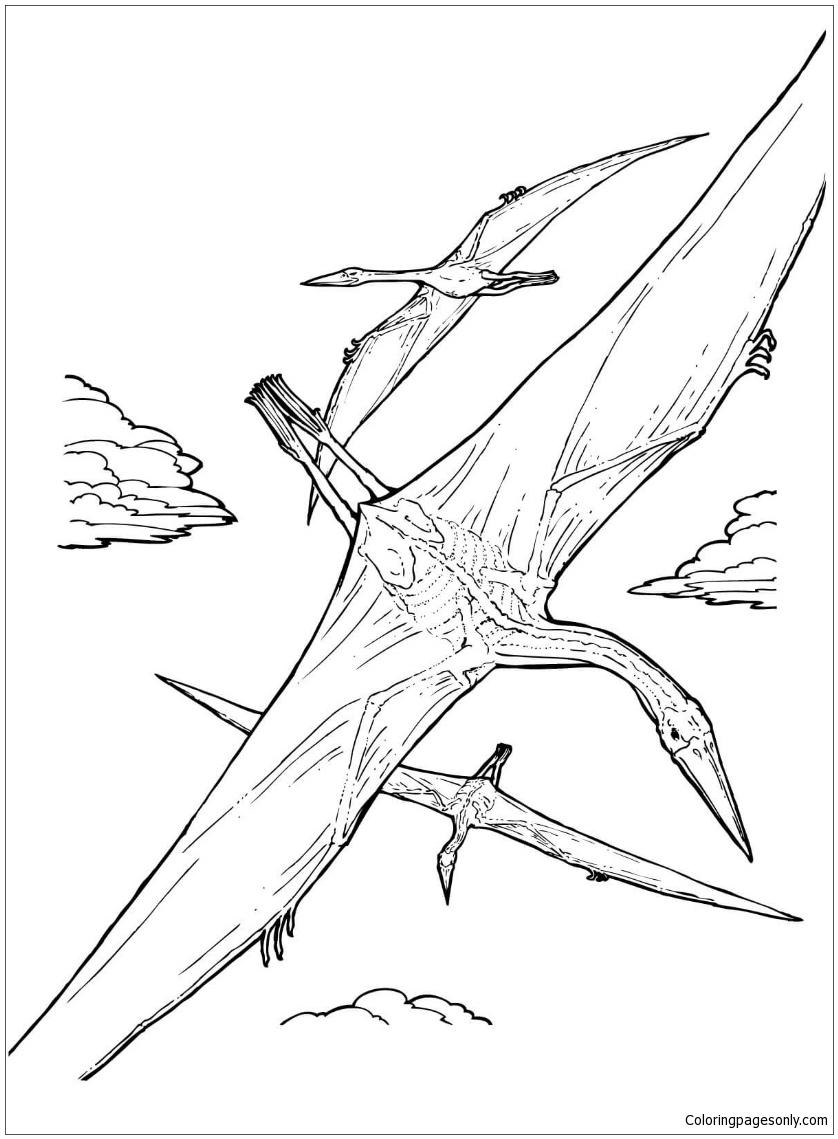 Quetzalcoatlus Pterosaur Coloring Page