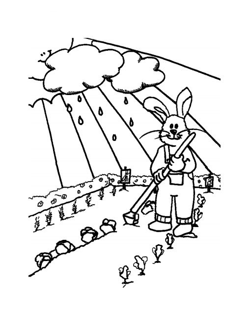 Rabbit Planting Vegetables On The Fields