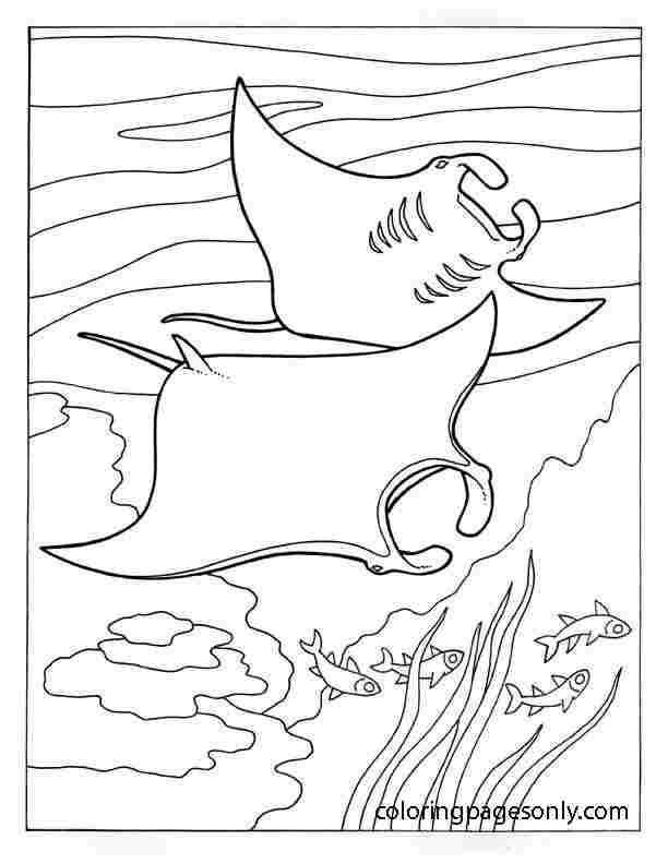 Ray fish swims under the ocean Coloring Page