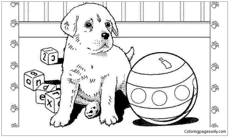 Real looking pitbull puppies coloring pages ~ Realistic Puppy Coloring Page - Free Coloring Pages Online
