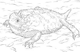 Realistic Texas Horned Lizard