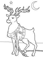 Reindeer Adorned For Christmas Coloring Page