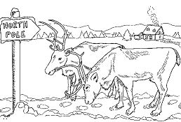 Reindeer at North Pole Coloring Page
