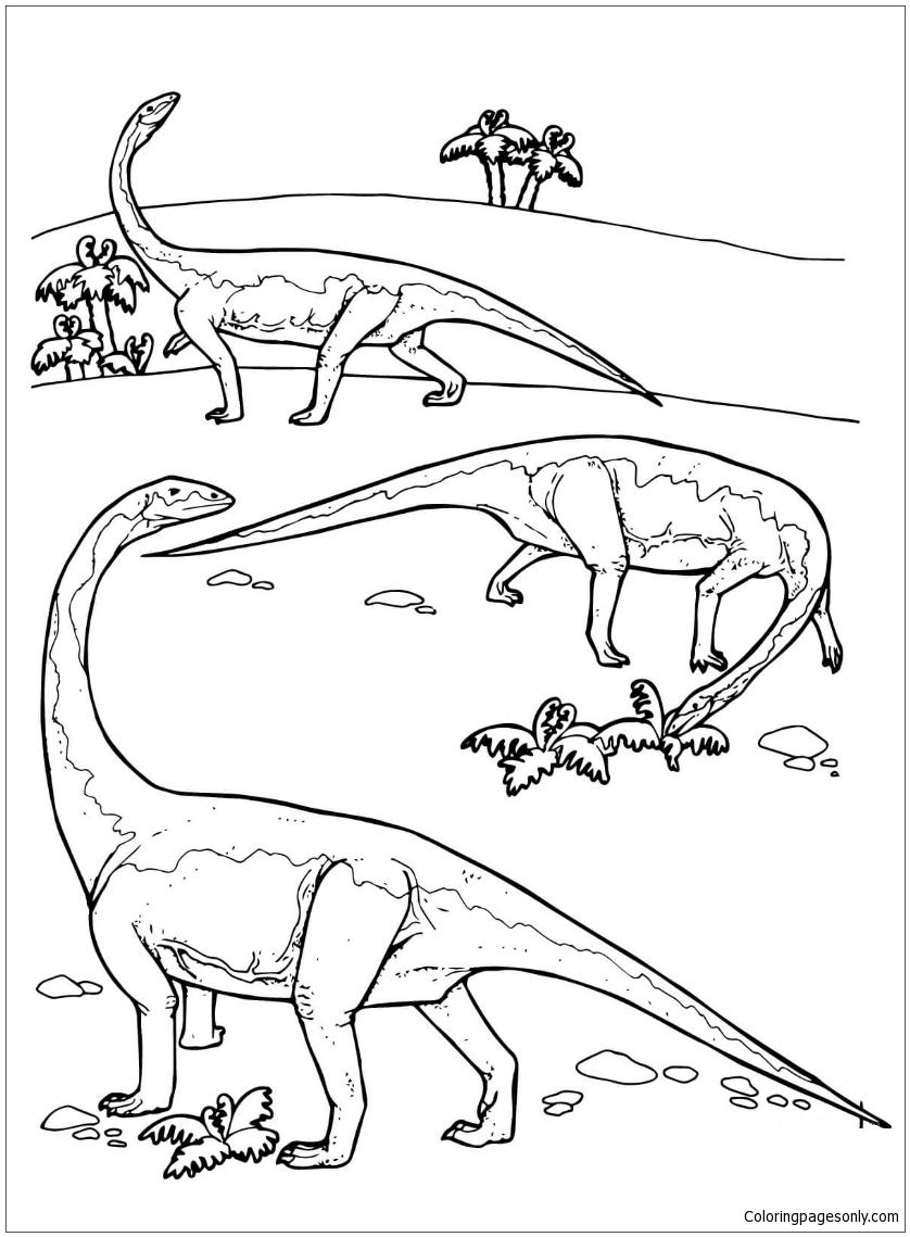Riojasaurus Prosauropod Triassic Dinosaurs Coloring Page