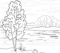 Trees and Rivers Coloring Page