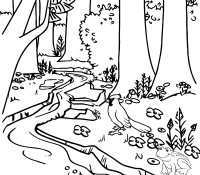 Rivers Forest Coloring Page