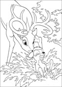 Roe Helps Bambi To Take A Bath  from Bambi Coloring Page