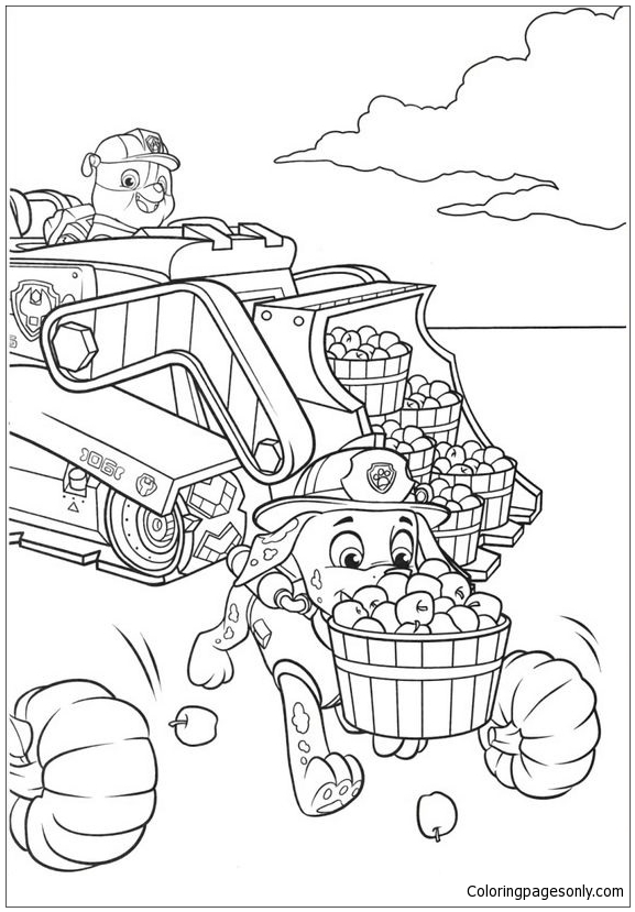 rubble and marshall paw patrol coloring pages  cartoons
