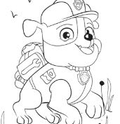 Rubble Paw Patrol Disney