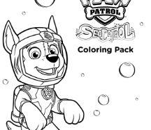 Sea Paw Patrol