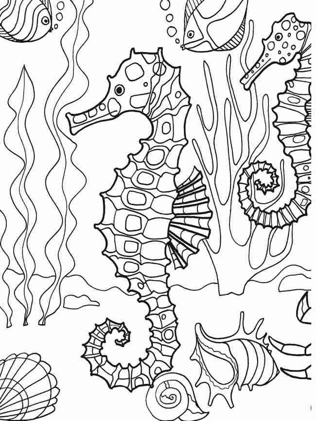 Seahorses under ocean details Coloring Page