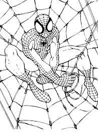 Security Spiderman
