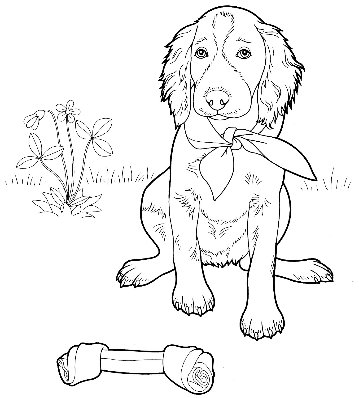 Setter with bone Coloring Page
