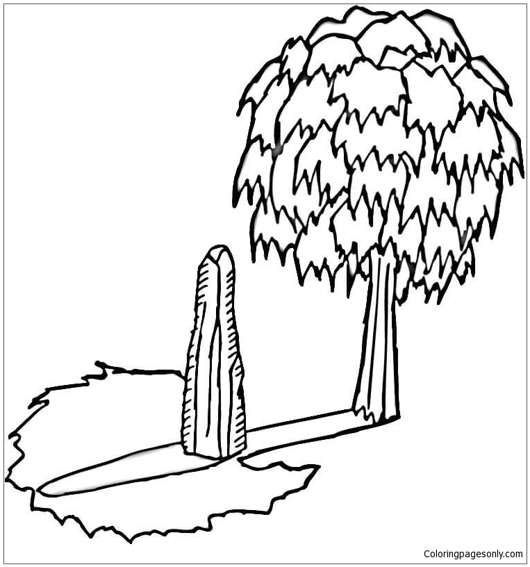 Shadow Of The Tree Coloring Page
