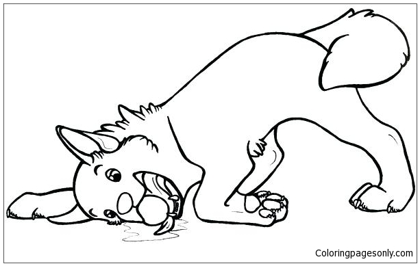Siberian Husky Puppy Coloring Page - Free Coloring Pages Online