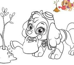 Skye From Paw Patrol 2 Coloring Page