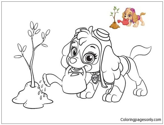 Skye From Paw Patrol Coloring Page Free Coloring Pages Online