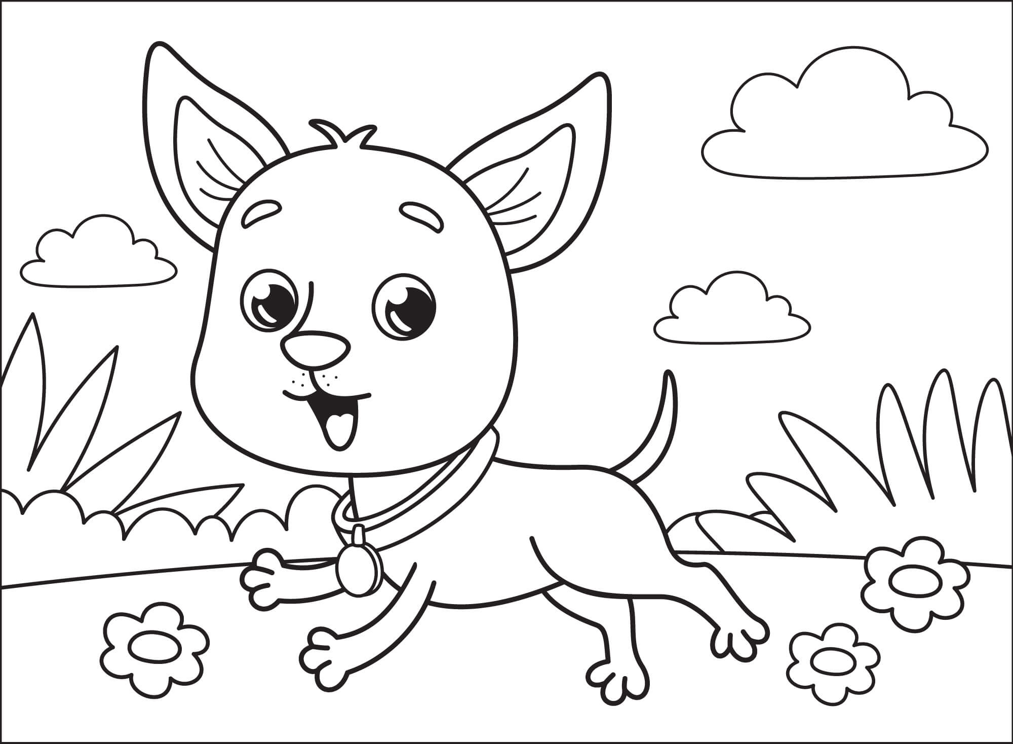 Small Chihuahua Coloring Page