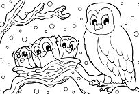 snowy owl winter  Coloring Page