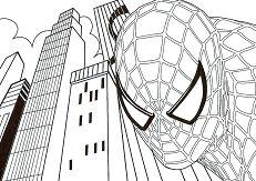 Spiderman 35