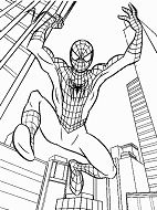 Spiderman 40