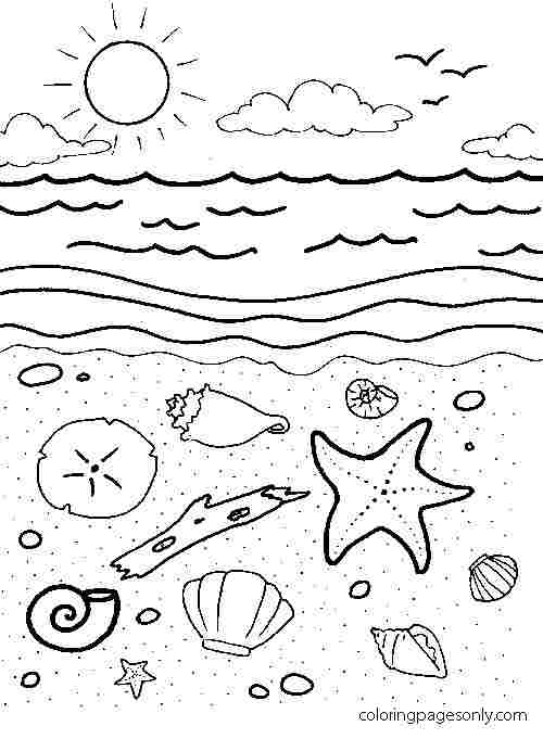 Starfish, Clams and Seasnail on the sand Coloring Page
