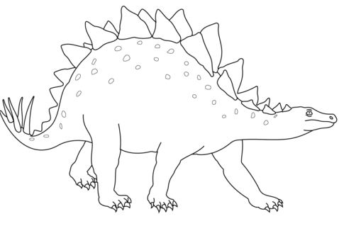 Stegosaurus From Dinosaur Coloring Page