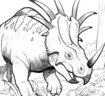 Styracosaurus Dinosaur 3 Coloring Page